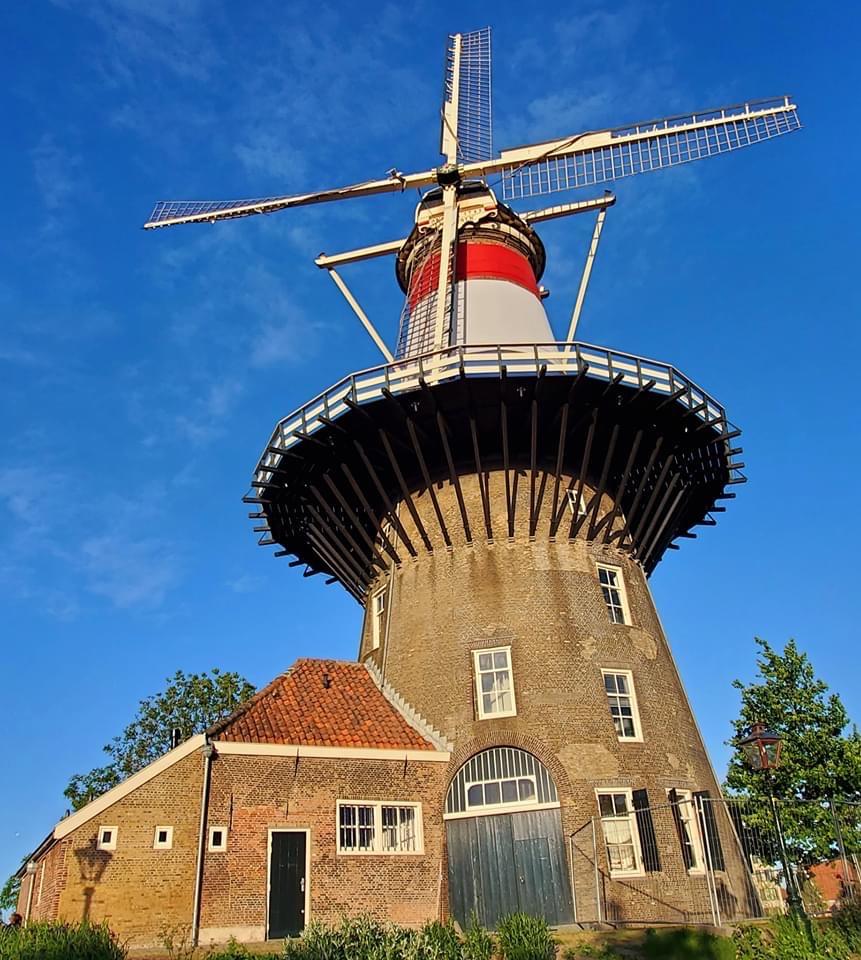 Netherlands4