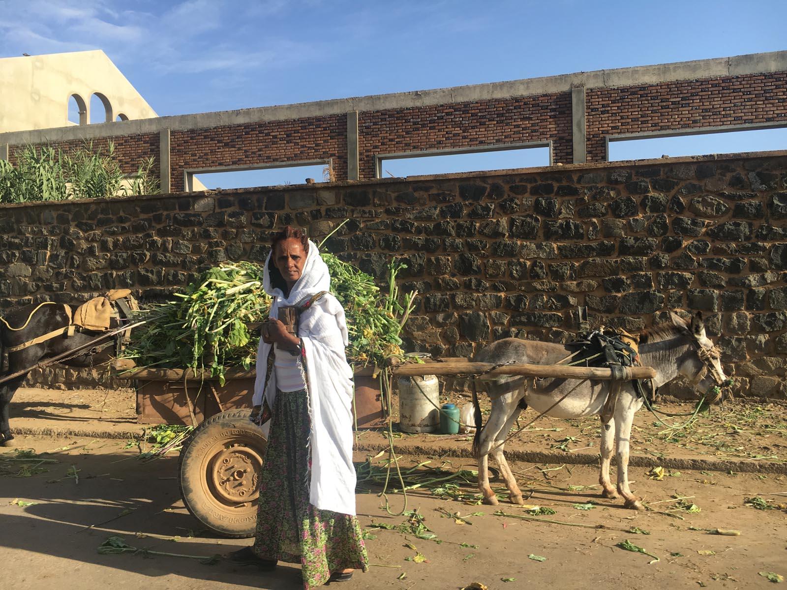 eritrea (12)
