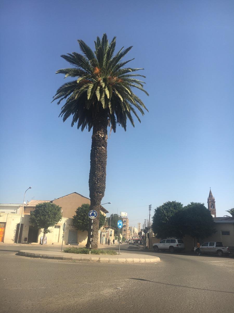 eritrea (21)