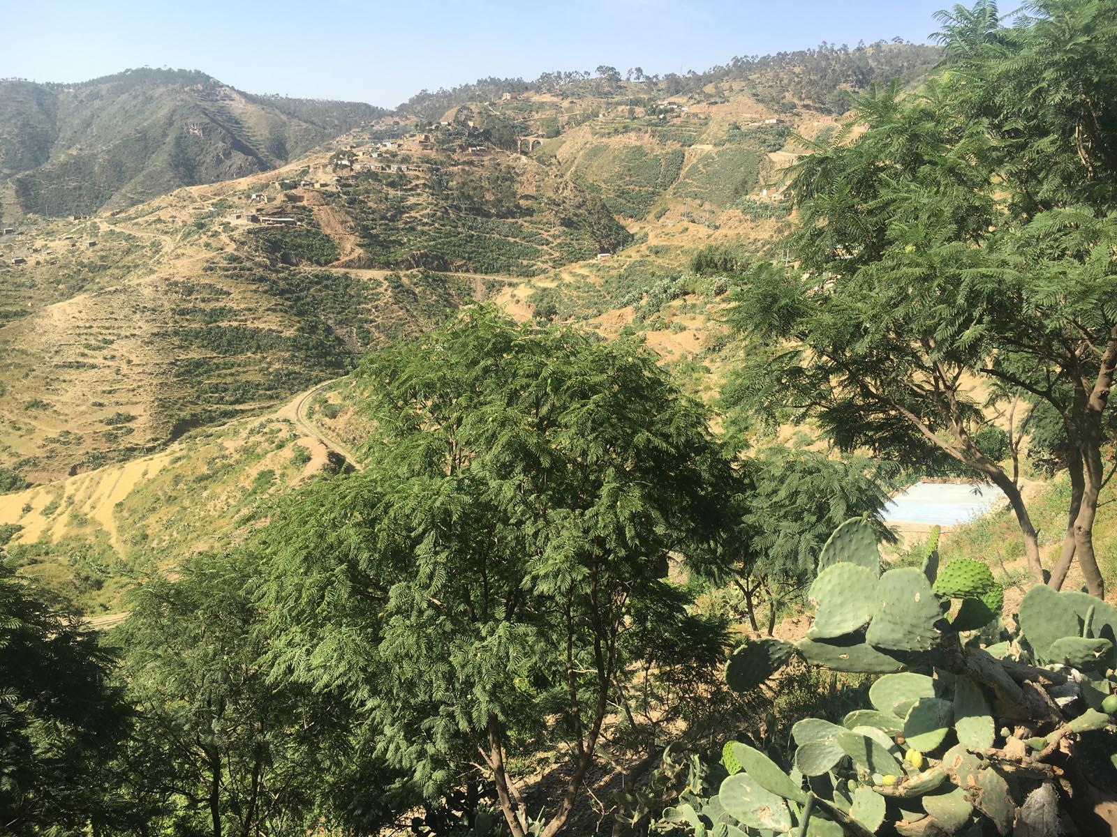 eritrea (27)