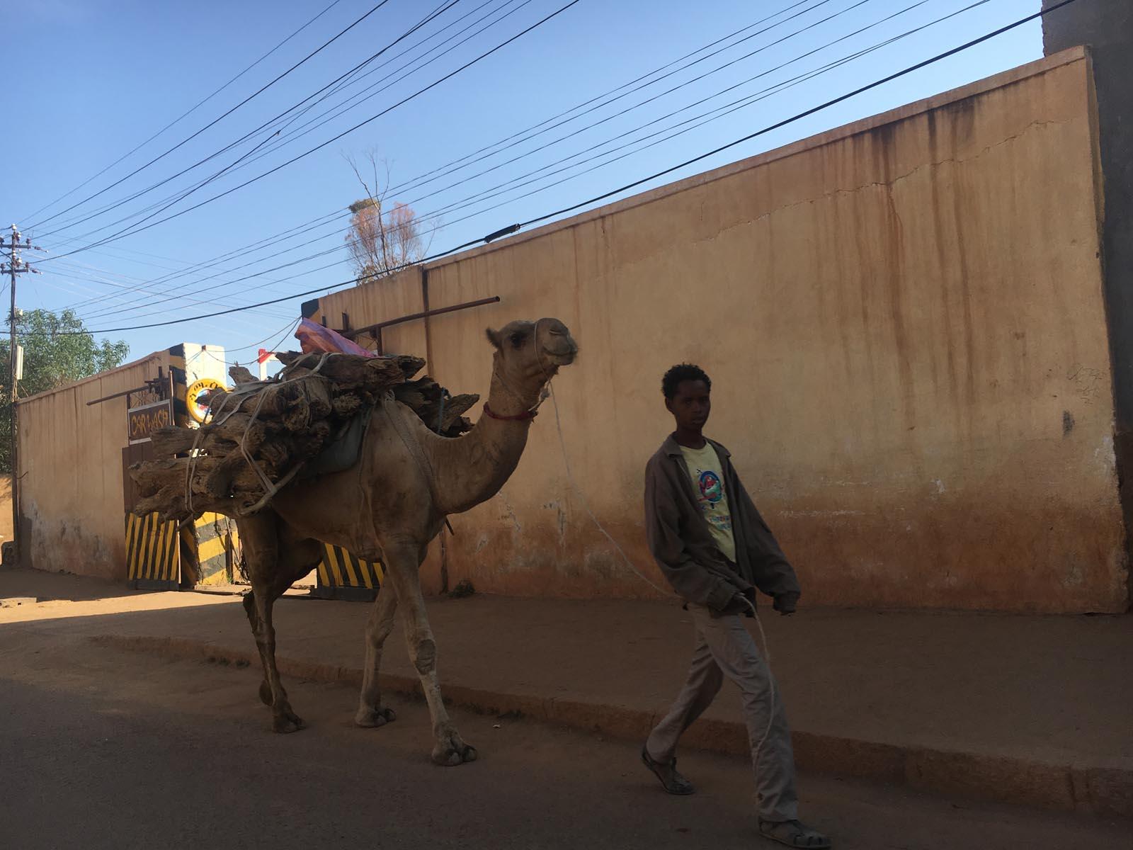 eritrea (9)