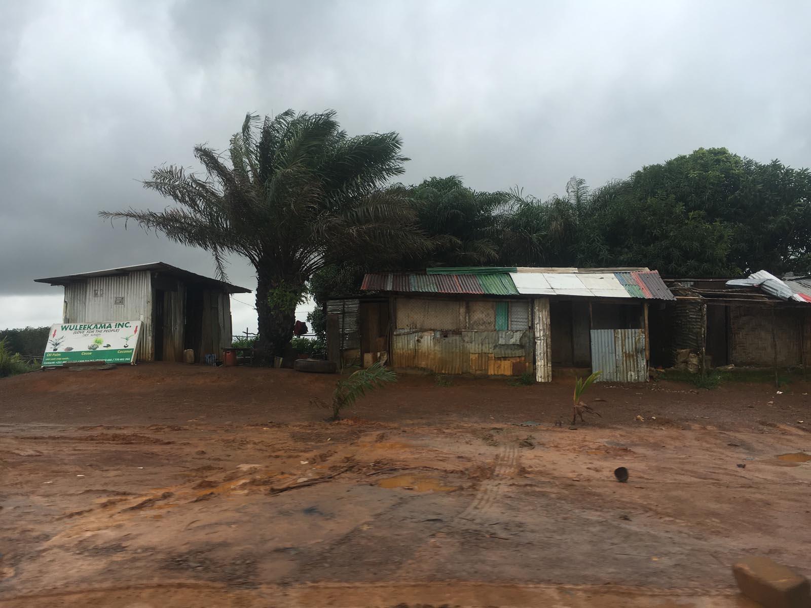 liberia (3)