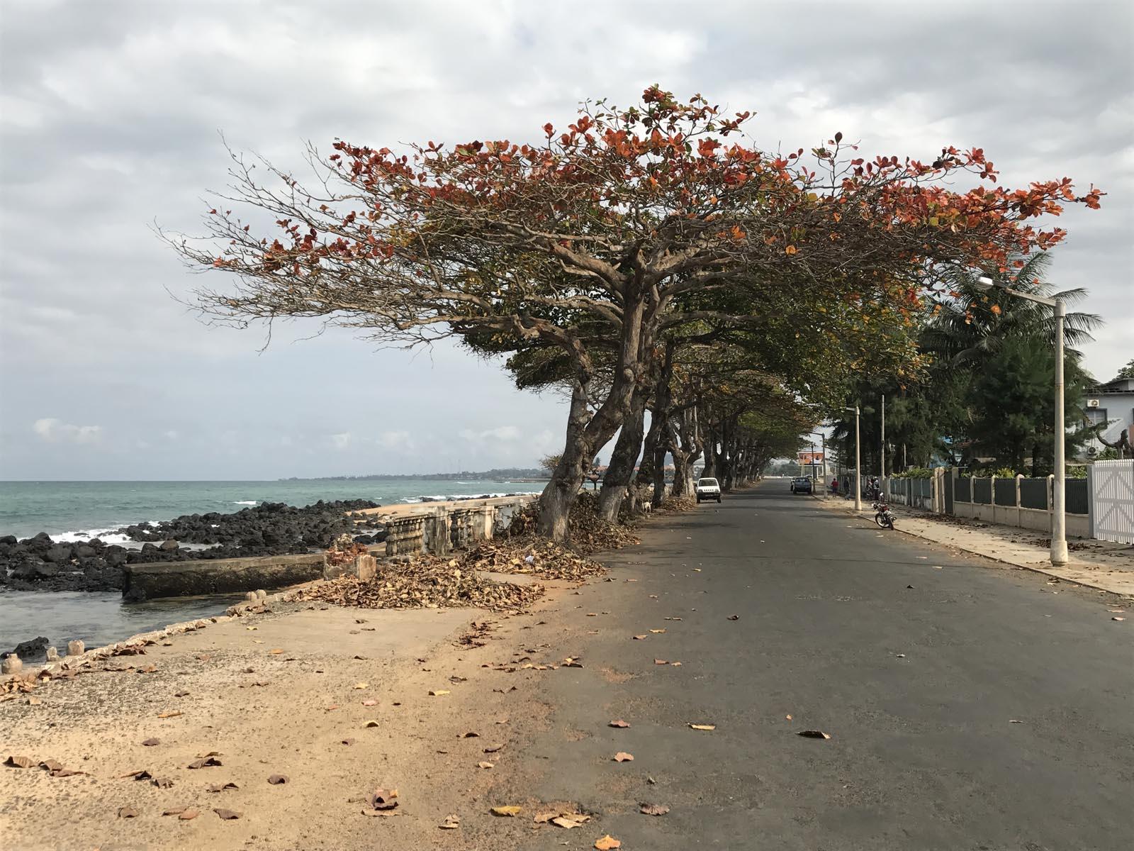 Santo Tomé (17)