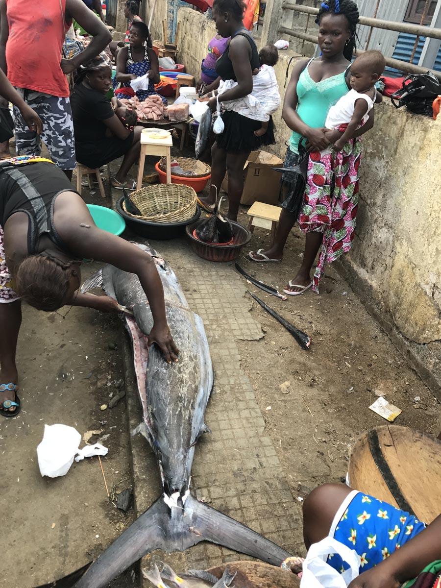 Santo Tomé (29)