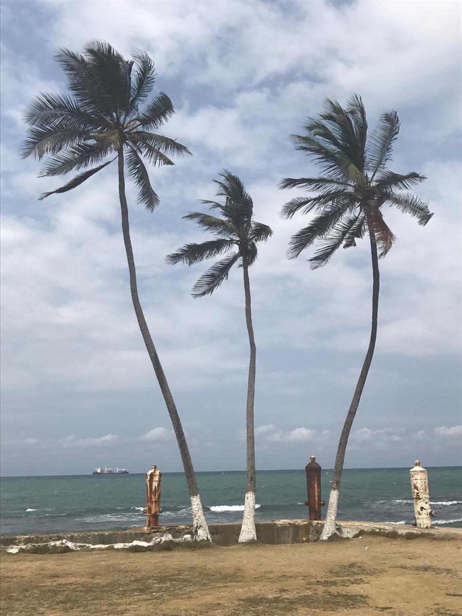Santo Tomé (8)