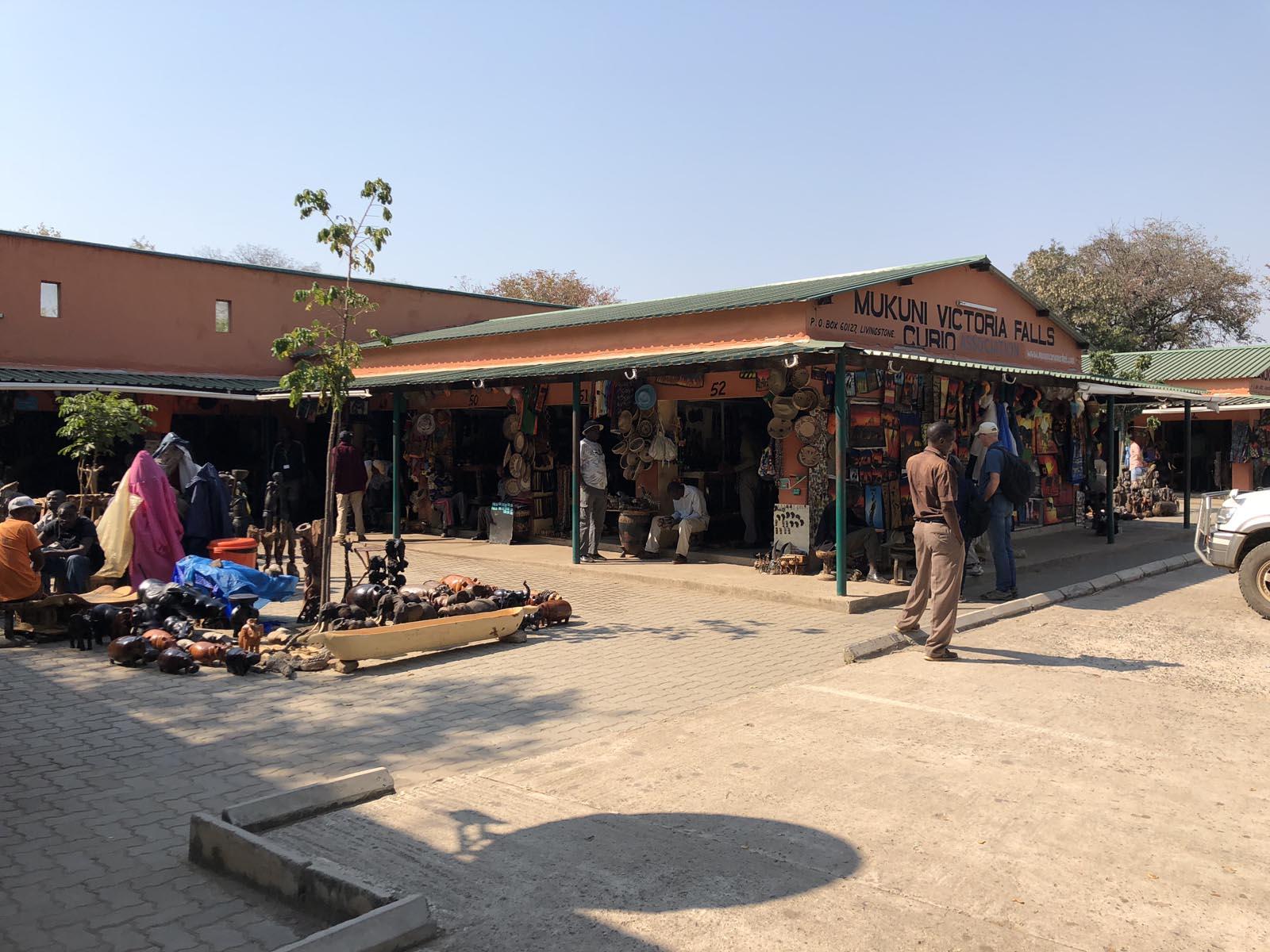 zambia (37)